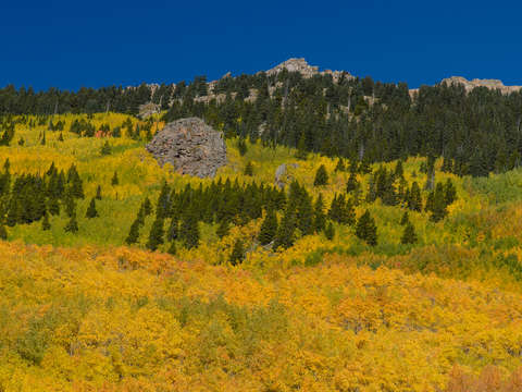 Fall-in-the-rockies