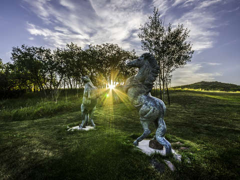 Frolicking horse statues sunrise
