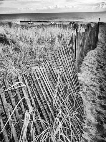 Fence By The Sea