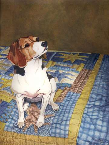 Beagle on a Patchwork Quilt