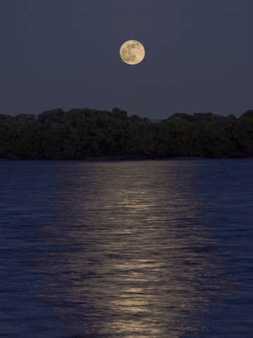 Moonrise florida 2