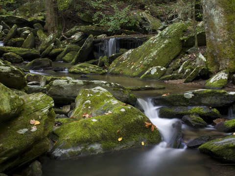 Catawba headwaters