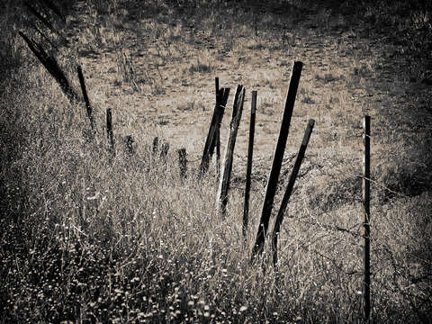 Sutter buttes fence