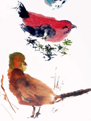 Winter birds 3