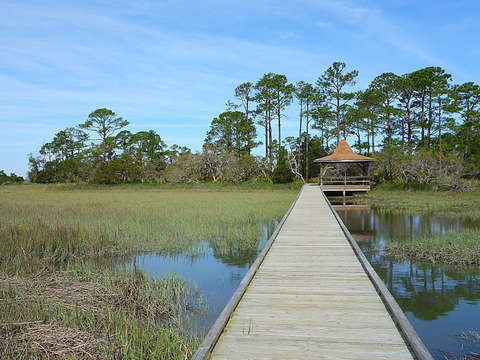 The Marsh Boardwalk