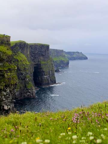 Blooming cliffs of moher