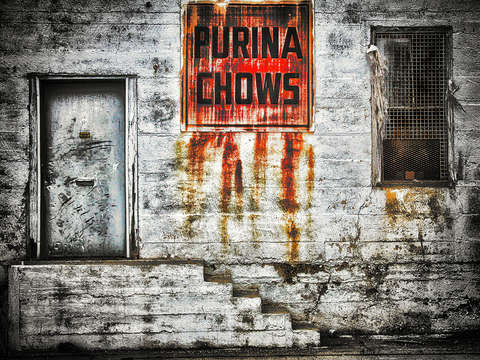 Purina chows