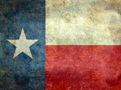 The lone star flag of texas state