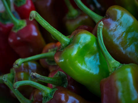 Greenred peppers
