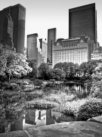 The pond 5th ave new york city