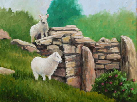 Sheep on a rock wall