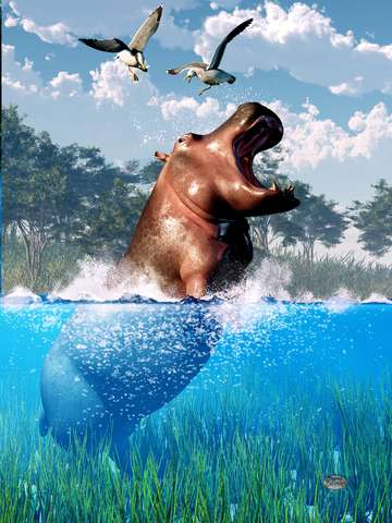 Lunging hippo