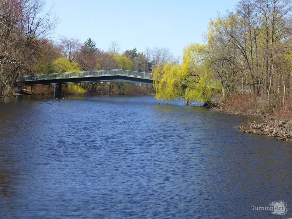 Spring on the charles river