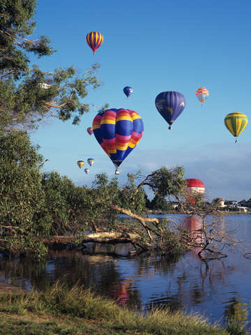 Hot air balloons over hamilton nz