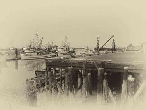 Steveston Harbor 1