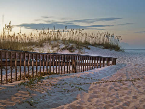 Fence to the Beach