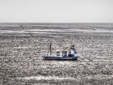 Blue and White Shrimpboat on Bay