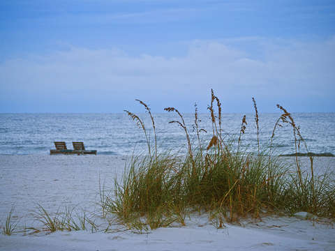 Sea grass and 2 chairs on the beach