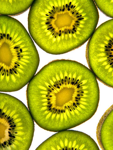 Kiwi fruit slise of life