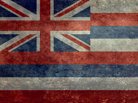 The state flag of hawaii vintage version