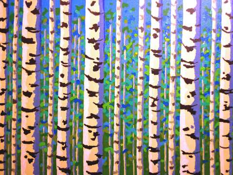 Birch trees series ii