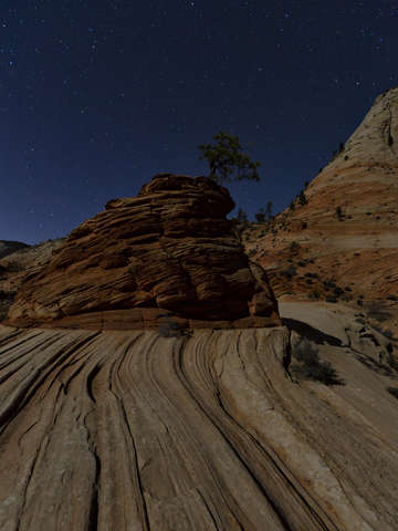 Zion in moonlight