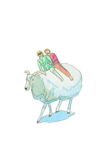 Sheep ride