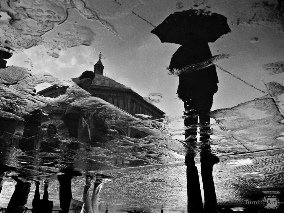 Firenze puddle 16