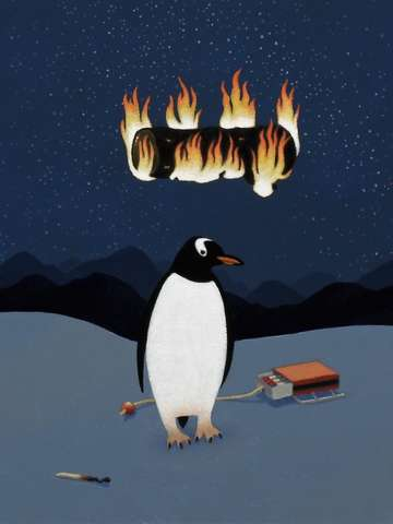 Penguin dreams fire
