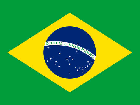 Brazilian national flag authentic version