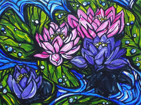 Purple and pink water lilies