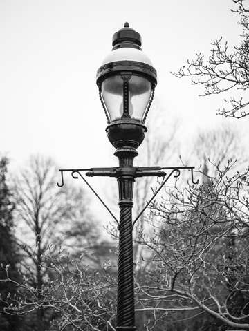 Smithsonian lamp post washington dc