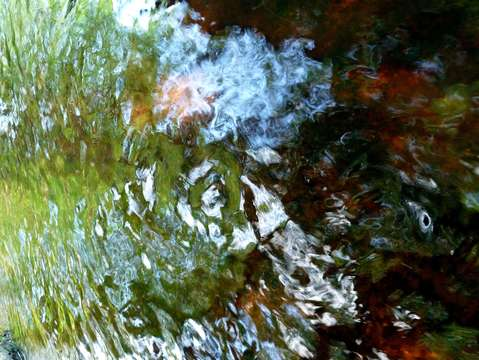 Abstract stream reflection 1