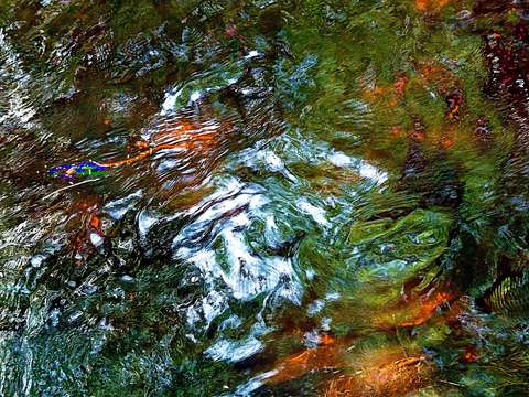 Nature abstraction 2