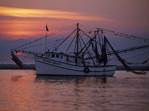 Shrimp trawler at sunset