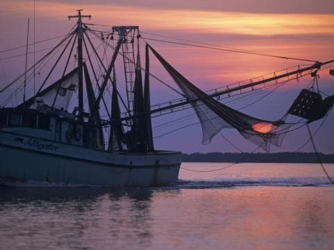 Sunset in trawler net