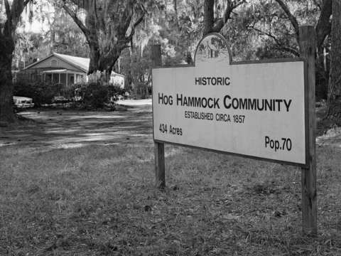 Hog hammock sign