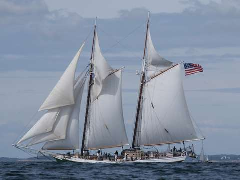 Schooner liberty clipper in gloucester