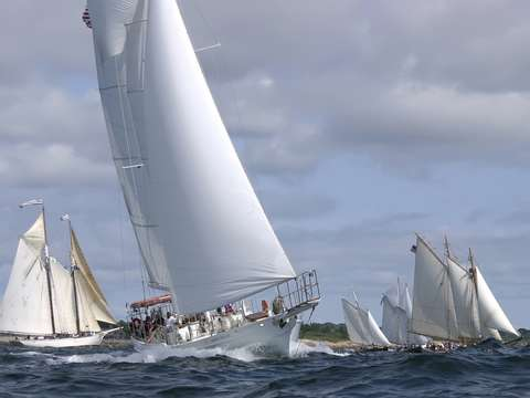 Grand nellie races in gloucester schooner festival
