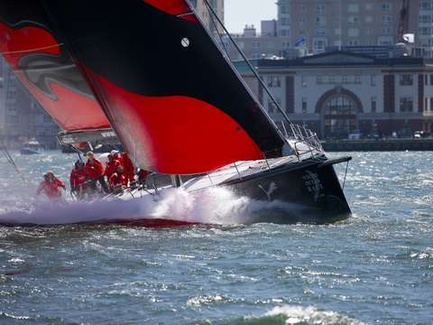 Puma cuts through waves in boston harbor
