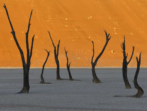 Deadvlei sunrise