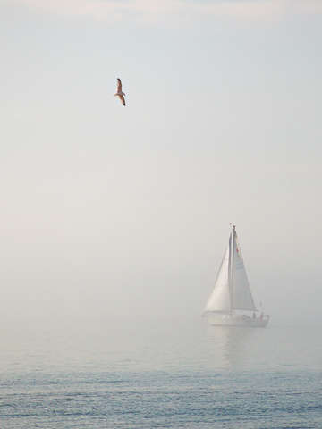 Sailing the fog