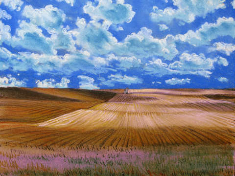 After the Harvest; North Dakota Wheat Field