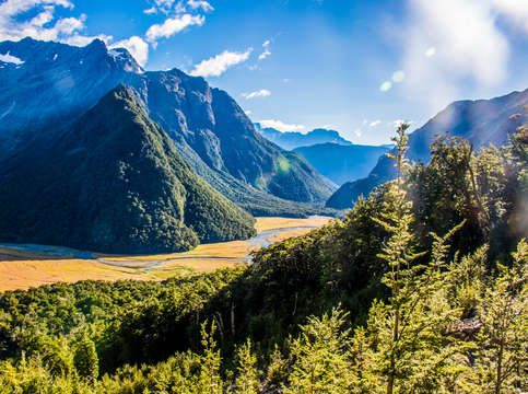 Routeburn track valley