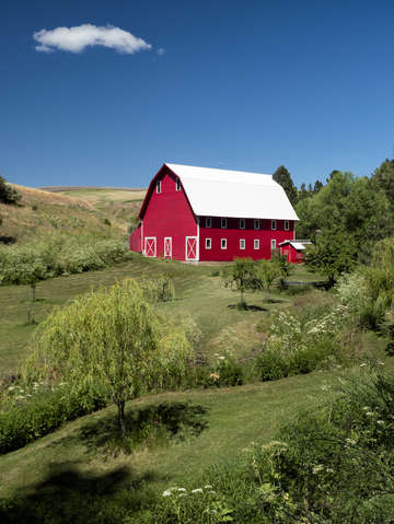 The red barn 4