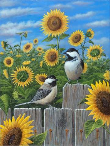 Chickadees and sunflowers
