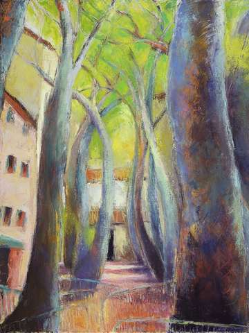 Trees of ceret 3