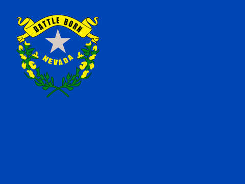Nevada state flag authentic version