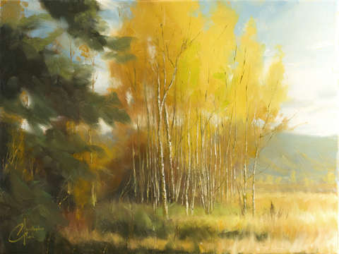 Aspen autumn iv