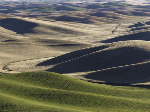 Palouse valley 2